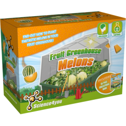 Fruit Greenhouse - Melons