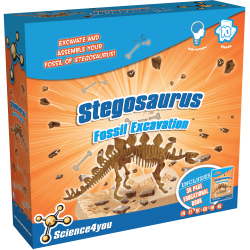 Fossil Excavation Stegosaurus